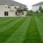 lawn mowing large backyard