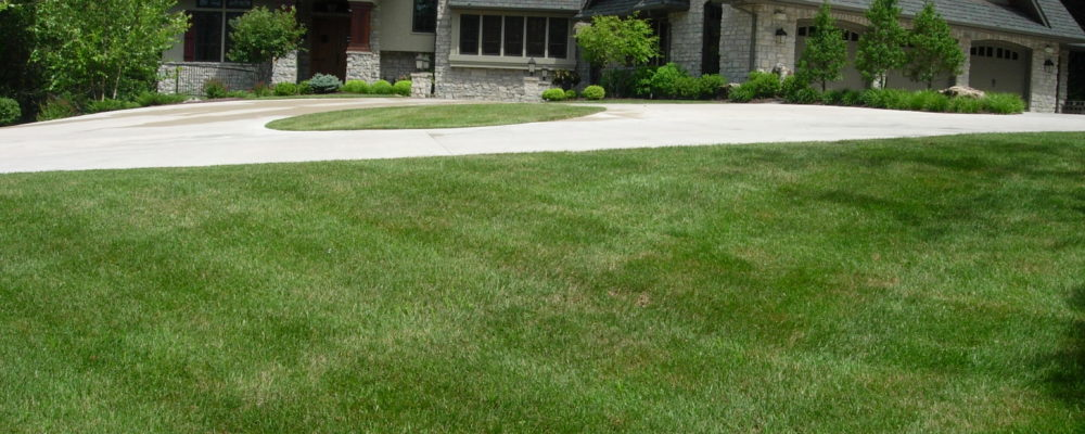 Lawn Care & Maintenance Columbia MO | Grizzly Bear Lawn Care