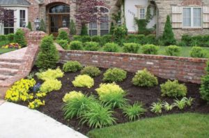 yard landscaping columbia mo