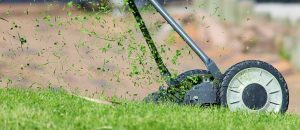 lawn mower lawn care service